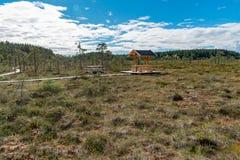 Ein schöner Weg durch einen großen Sumpf in Storfors Schweden Lizenzfreies Stockbild