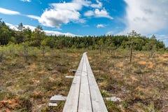 Ein schöner Weg durch einen großen Sumpf in Storfors Schweden Stockfotografie