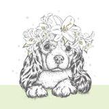 Ein schöner Welpe in einem Blumenkranz Ein Zucht- Hund in einem Kranz von Lilien Vector Illustration für eine Postkarte oder ein  stock abbildung