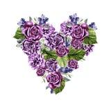 Ein schönes Aquarellherz mit Rosen und Pfingstrosenblumen, Blätter und Beeren Stockbild
