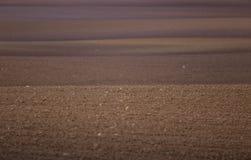 Ein schönes braunes Muster auf einem Feld im Frühjahr Abstrakter, strukturierter Hintergrund Lizenzfreie Stockbilder