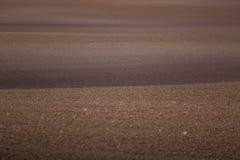 Ein schönes braunes Muster auf einem Feld im Frühjahr Abstrakter, strukturierter Hintergrund Stockfotos