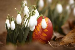 Ein schönes, farbiges rotes Osterei im Hinterhof Traditionelles Frühlingslebensmittel und -festival stockbild