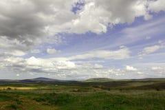 Ein schönes Feld Stockfotos