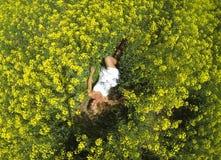 Ein schönes Mädchen, das auf einem Gebiet von gelben Blumen liegt stockbilder