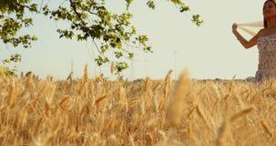 Ein schönes Mädchen mit einem Schleier beim Weizenfeldgehen stock video footage