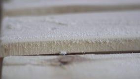 Ein schönes Produkt des Holzes Die Zauberergriffe mit Sandpapierholzklotz Arbeiten mit Holz Bretter des Holzes behandelt stock video footage