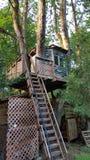 Ein schönes schauendes Baumhaus Stockfoto