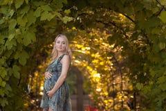 Ein schönes schwangeres Mädchen in einem Park Stockbild