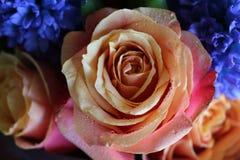 Ein sch?ner Blumenstrau? von Rosen und von Hyazinthen appelliert jeder Frau Sein k?niglicher Duft erobert jedes stockbilder