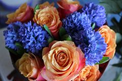Ein sch?ner Blumenstrau? von Rosen und von Hyazinthen appelliert jeder Frau Sein k?niglicher Duft erobert jedes lizenzfreie stockfotos