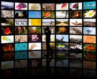 Ein Schattenbild eines Fotografen mit seinen Fotos Stockbilder