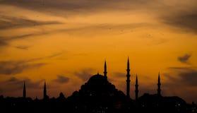 Ein Schattenbild von Suleymaniye-Moschee stockfotos