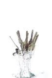 Ein Schlüsselkettenherausspringen des Wassers Stockfoto