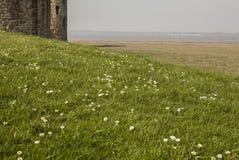 Ein Schloss und Wiesen in Wales - sonniges Wetter stockfoto
