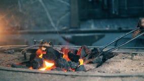 Ein Schmied bewegt Kohle während sie Hitze stock video footage