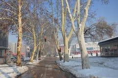 Ein Schnee bedeckte Straße in der Stadt Lizenzfreie Stockbilder