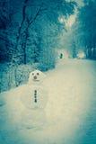 ein Schneemann im Wald Lizenzfreie Stockbilder