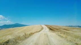 Ein Schotterweg mitten in einem Weizenfeld Stockbild