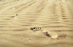 Ein Schritt auf dem Sand Stockfotos