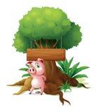 Ein Schwein, das vor einem leeren hölzernen Schild steht Lizenzfreies Stockfoto