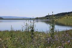 Ein See in der Landschaft Lizenzfreie Stockfotografie