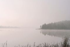 Ein See im Wald Lizenzfreie Stockfotografie