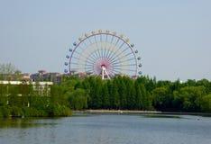 Ein See mit einem Riesenradhintergrund an Shanghai-wildem Tierpark Stockfotos