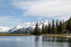 Ein See und ein Wald Lizenzfreie Stockfotografie