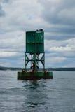 Ein Seemöwennetz auf Navigationsboje im Stangen-Hafen, Maine Lizenzfreie Stockbilder
