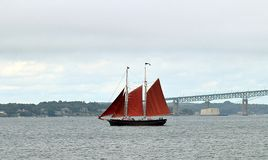 Ein Segelboot mit roten Segeln und Newport-Brücke stockfotos