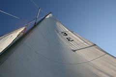 Ein Segelbootsegel oben schauen Stockfotografie