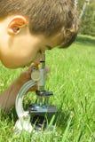 Ein sehr junger Wissenschaftler lizenzfreies stockfoto