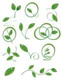Ein Set grüne Blätter Stockfoto