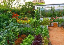 Ein Showgarten bei Chelsea Flower Show Lizenzfreies Stockfoto