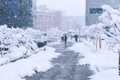 Ein sich schnell bewegender Schneesturm kam im Korea-Bereich an Lizenzfreie Stockbilder