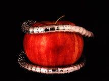 Ein silbernes Armband auf einem roten Apfel Stockfotos