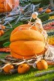 Ein Skelett denkt das Lehnen gegen einen Halloween-Kürbis stockfotos
