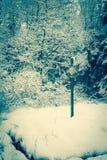 Ein sneefall im Wald Lizenzfreies Stockbild