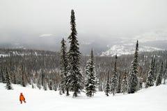 Ein Snowboarder auf der Steigung bedeckte Schnee auf einem Hintergrund des Winterwaldes und -berge Lizenzfreies Stockbild