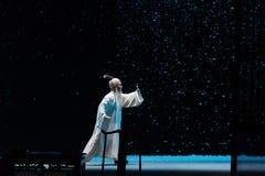 """Ein Snowy Nacht-Shanxi Operatic""""Fu Shan zu Beijingâ€- Lizenzfreie Stockfotografie"""
