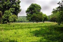 Ein Sommertag an einem Park Stockfotografie