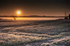 Ein Sonnenaufgang über breiten Feldern lizenzfreies stockfoto