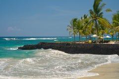 Ein Sonnenbad nehmen in dem Meer Lizenzfreies Stockbild