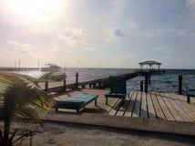 Ein Sonnenbad nehmendes Dock Amber Caye Stockbilder