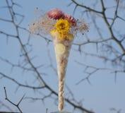 Ein sonniger heller Wintermorgen gibt eine gute Laune Stockfotografie