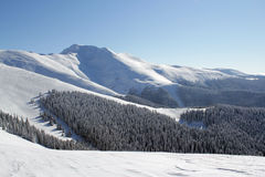 Ein sonniger Tag in den Bergen! Lizenzfreies Stockbild