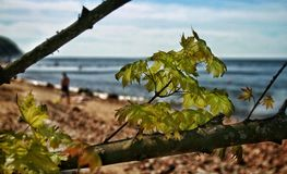 Ein sonniger Tag in der Ostsee stockfoto