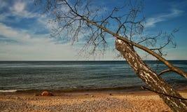Ein sonniger Tag in der Ostsee stockbild