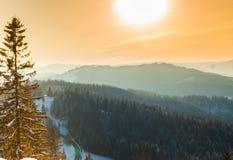 Ein sonniger Wintertag lizenzfreie stockfotos